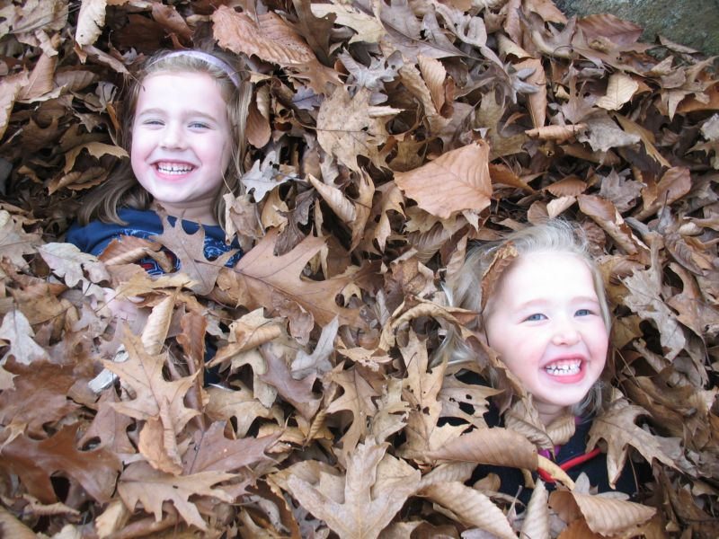 Leaf pile mayhem