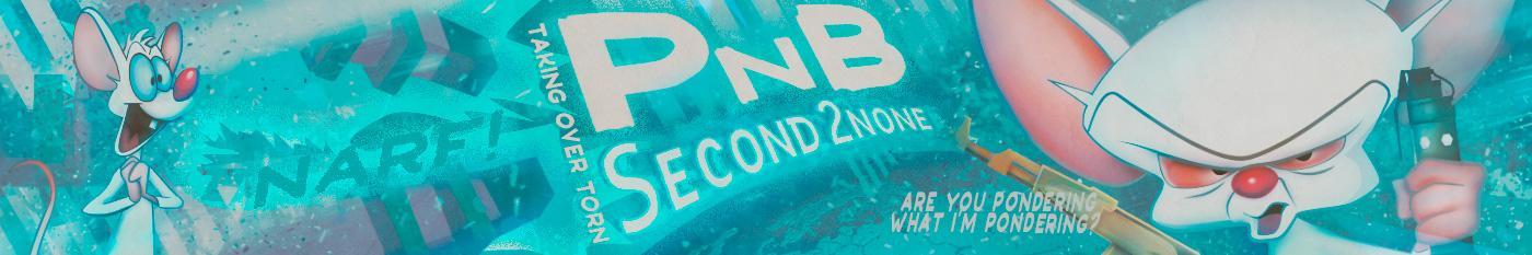 PnB S2N